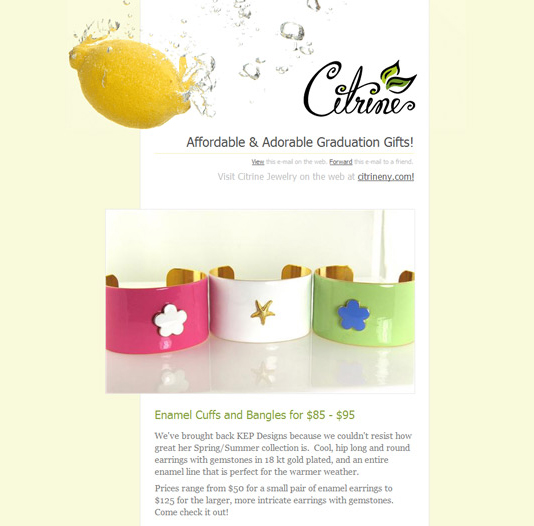 Newsletter Citrineny