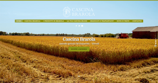 Screenshot Cascina Brarola website